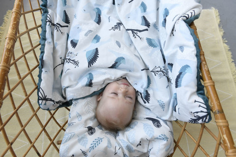 Imagine Patura 110x140 cm Toddler (2 fețe) - Speedy me bright - French lavender
