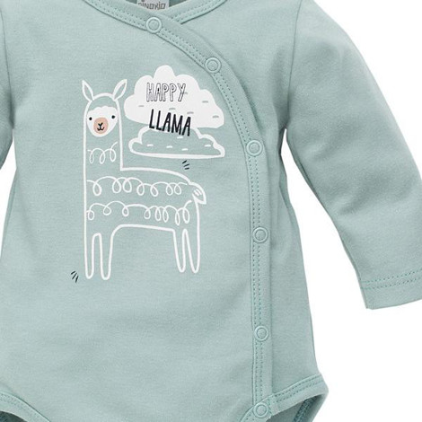 Imagine Body Happy Llama