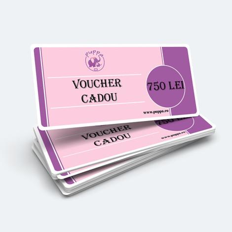 Imagine Voucher CADOU 750 lei